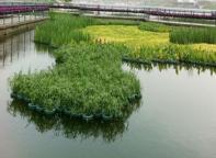旅游区景观湖水净化工程
