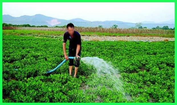 养殖废水处理后灌溉田地